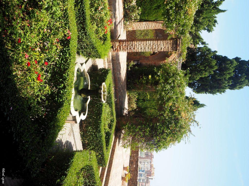 Malaga jardin alcazaba