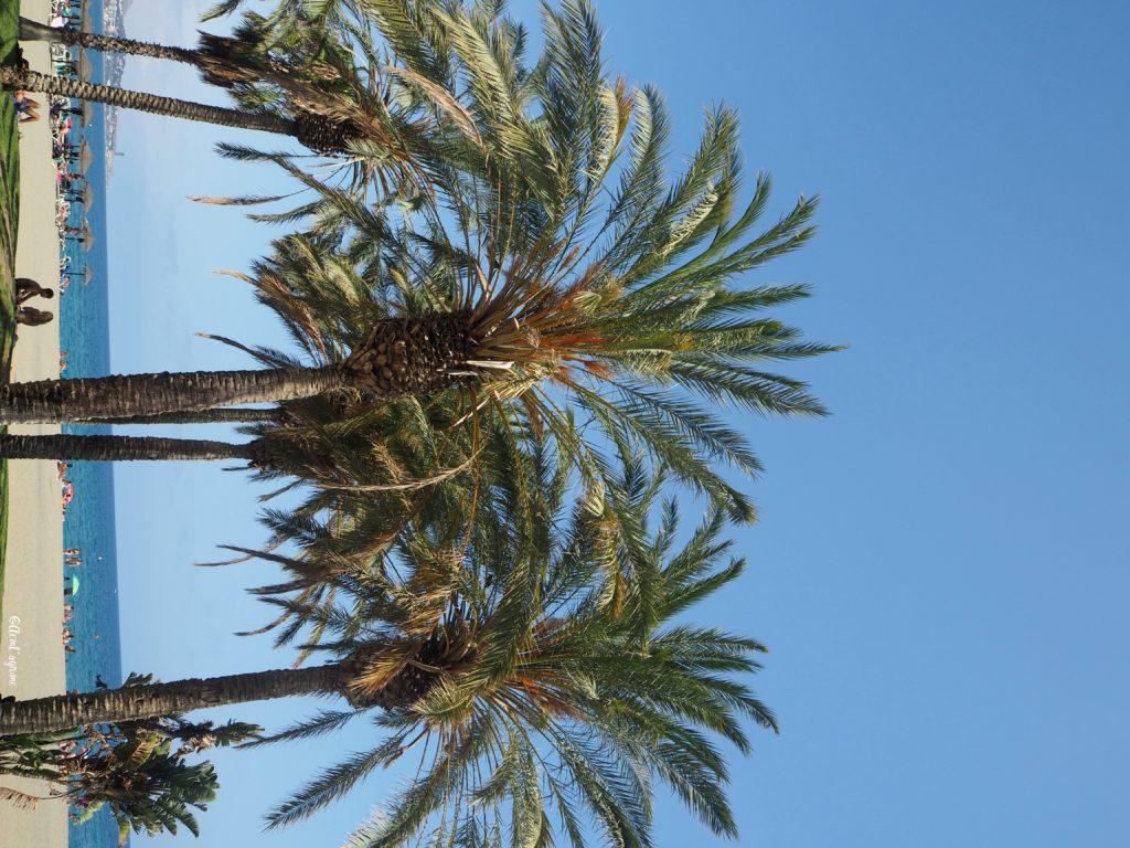 Malaga plage de sable